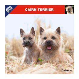 Calendrier Cairn Terrier