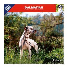 Calendrier Dalmatien