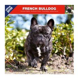 Calendrier Bouledogue Français