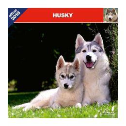 Husky calendar