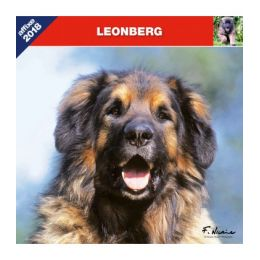 Calendrier Léonberg