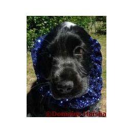 Snood - Cagoule protection oreilles tombantes - Motif bleu nuit pailleté
