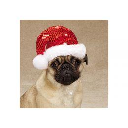 Bonnet Xmas - Bonnet de Noël pour chien