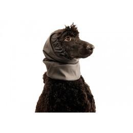 Snood imperméable pour petites races - Cagoule protection oreilles tombantes