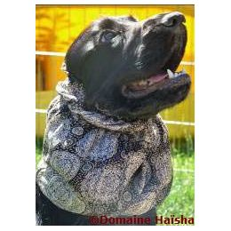 Snood - Protection for long ears - Black & beige medallion pattern
