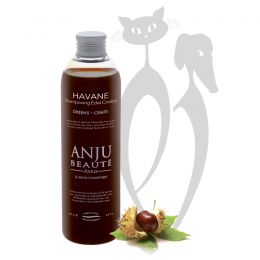ANJU - Shampooing abricot