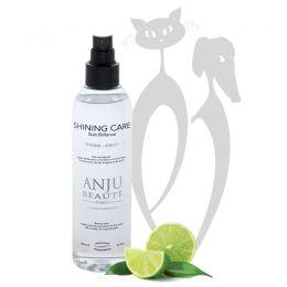 ANJU - Lotion spray Shining