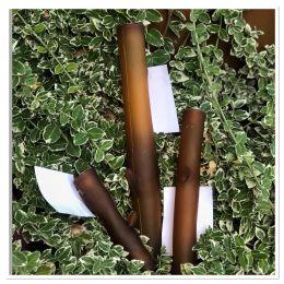 Bâton en caoutchouc organique 100% naturel avec couinement