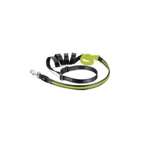 Laisse lumineuse extensible nylon USB
